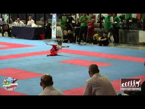 Carlos Francisco Gomez Santillan (MEX) Junior WAKO World Championships 2014