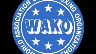 WAKO European Championships 2016 (LC - LK - K1) Maribor, Slovenia - 28/10/2016 (camera 1 RING 1)