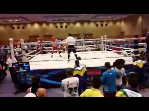 2016 WAKO Pan American Championship