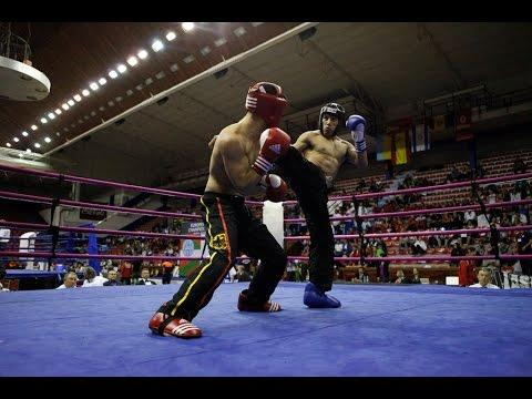 European Kickboxing Championship Galla Fights Full Contact, K1, Low Kick