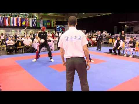Kiraly V Ireland Hungarian Kickboxing World Cup 2016