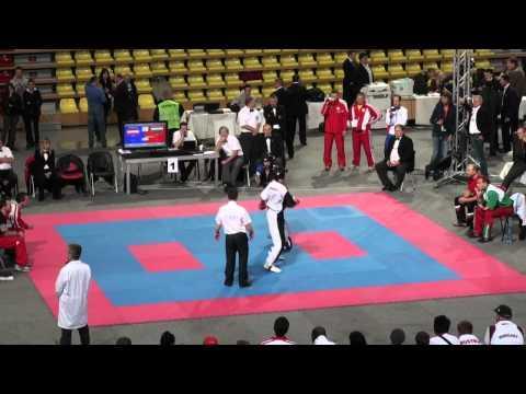 WAKO Kickboxing WC 2011 FINAL: LC -79kg Emanuil Dimitrov(BUL) Vs Georg Parth(AUT)