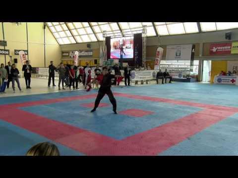 Linar Bagautdinov WAKO European Championships 2016