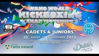 Tatami 6 and 8 WAKO World Championships 2016 Day 3