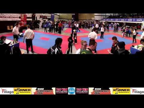 WAKO - German Open 2016 / Ring 3/4 / Day 1